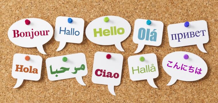 Übersetzungen für Studenten
