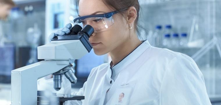 Bioingenieurwesen-Studium