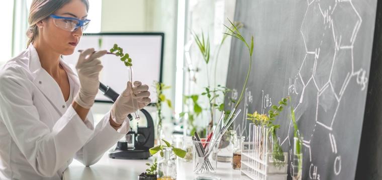 biologie studium studieng nge inhalte berufsaussichten