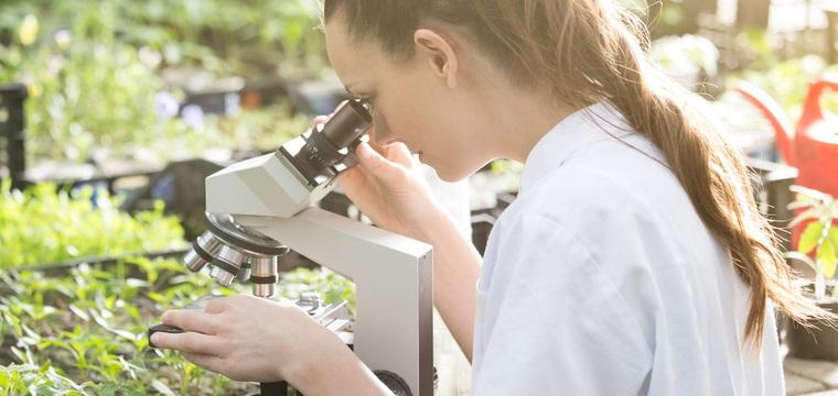 Mikrobiologie Studium