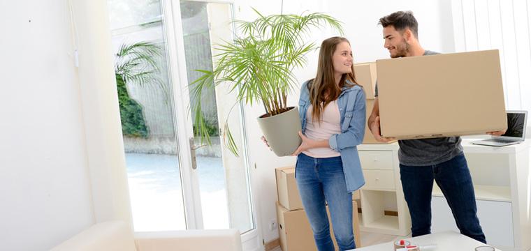 Junge Frau und junger Mann tragen Zimmerpflanze und Umzugskarton.