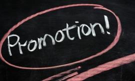 20 Prozent aller Stipendien sind Promotionsstipendien