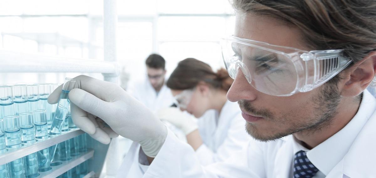 Wissenschaftlicher Mitarbeiter: Ausbildung & Beruf