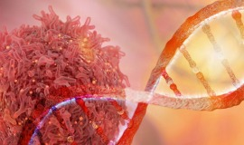 Biotechnologie-Studium